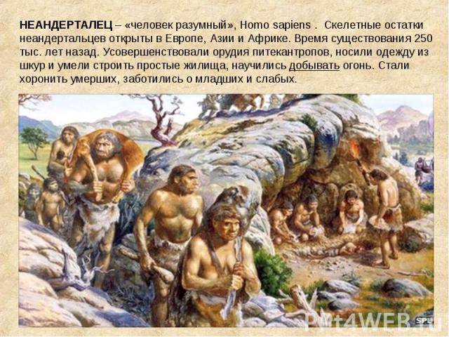 НЕАНДЕРТАЛЕЦ – «человек разумный», Homo sapiens . Скелетные остатки неандертальцев открыты в Европе, Азии и Африке. Время существования 250 тыс. лет назад. Усовершенствовали орудия питекантропов, носили одежду из шкур и умели строить простые жилища,…