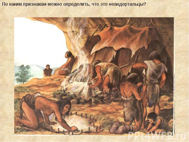 По каким признакам можно определить, что это неандертальцы?