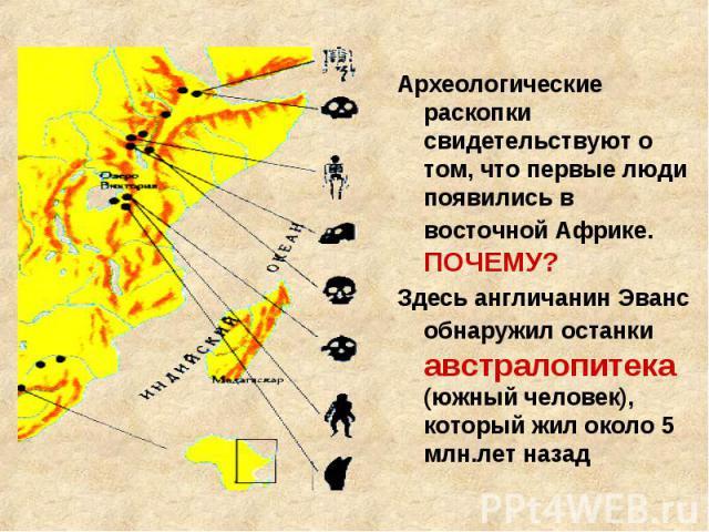 Археологические раскопки свидетельствуют о том, что первые люди появились в восточной Африке. ПОЧЕМУ? Здесь англичанин Эванс обнаружил останки австралопитека (южный человек), который жил около 5 млн.лет назад
