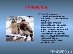 Селькупы. СЕЛЬКУПЫ - народ в Российской Федерации. Численность 3600 человек. Жив