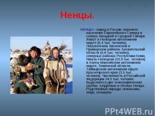 Ненцы. НЕНЦЫ - народ в России, коренное население Европейского Севера и севера З