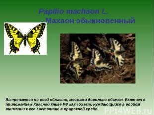 Papilio machaon L. - Махаон обыкновенный Встречается по всей области, местами до