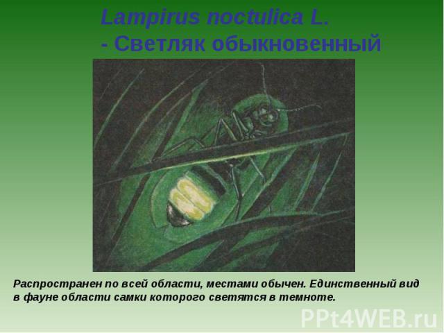 Lampirus noctulica L. - Светляк обыкновенный Распространен по всей области, местами обычен. Единственный вид в фауне области самки которого светятся в темноте.