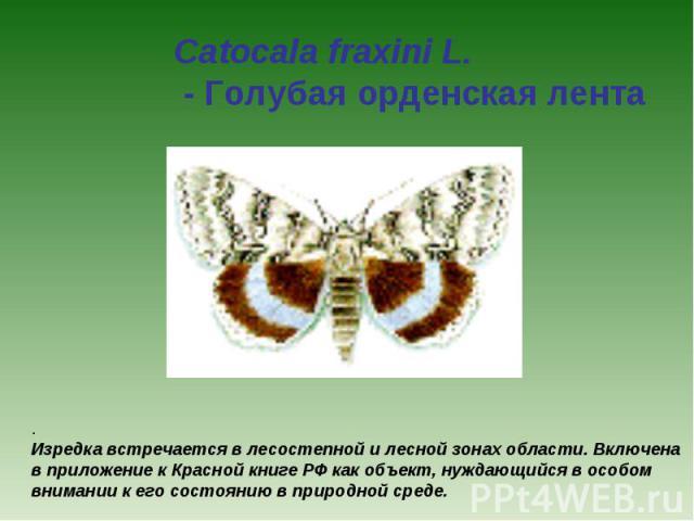 Catocala fraxini L. - Голубая орденская лента . Изредка встречается в лесостепной и лесной зонах области. Включена в приложение к Красной книге РФ как объект, нуждающийся в особом внимании к его состоянию в природной среде.