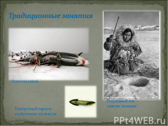 Традиционные занятияПоворотный гарпун-изобретение эскимосов Подлёдный лов – занятие женщин.
