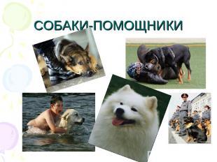 СОБАКИ-ПОМОЩНИКИ