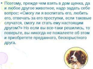 Поэтому, прежде чем взять в дом щенка, да и любое другое животное, надо задать с