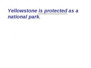 Yellowstone is protected as a national park.