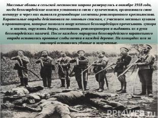 Массовые облавы в сельской местности широко развернулись в октябре 1918 года, ко