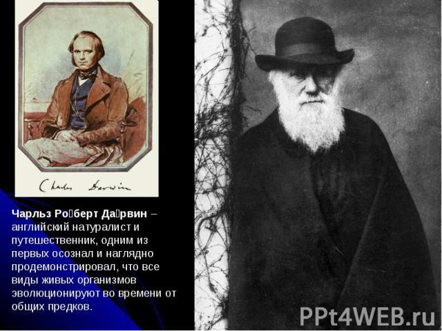Чарльз Ро берт Да рвин –английский натуралист и путешественник, одним из первых осознал и наглядно продемонстрировал, что все виды живых организмов эволюционируют во времени от общих предков.