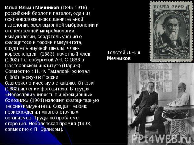 Илья Ильич Мечников (1845-1916) — российский биолог и патолог, один из основоположников сравнительной патологии, эволюционной эмбриологии и отечественной микробиологии, иммунологии, создатель учения о фагоцитозе и теории иммунитета, создатель научно…
