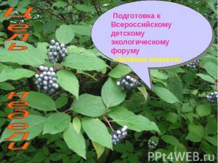 Подготовка к Всероссийскому детскому экологическому форуму «Зелёная планета» Цел