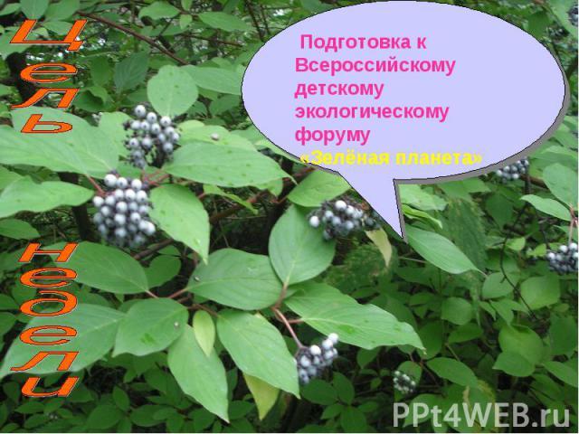 Подготовка к Всероссийскому детскому экологическому форуму «Зелёная планета» Цель недели