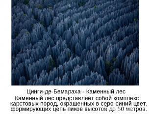 Цинги-де-Бемараха - Каменный лес Каменный лес представляет собой комплекс карсто