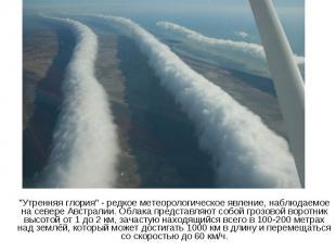 """""""Утренняя глория"""" - редкое метеорологическое явление, наблюдаемое на севере Авст"""