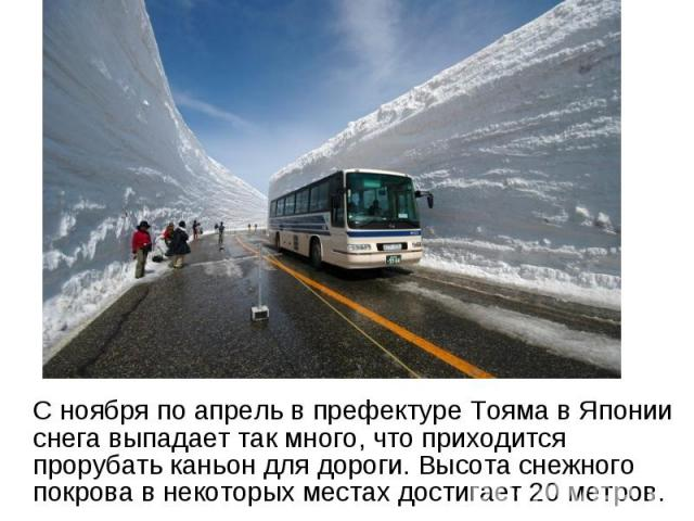 С ноября по апрель в префектуре Тояма в Японии снега выпадает так много, что приходится прорубать каньон для дороги. Высота снежного покрова в некоторых местах достигает 20 метров.
