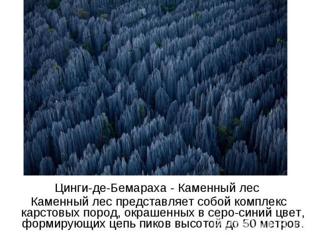 Цинги-де-Бемараха - Каменный лес Каменный лес представляет собой комплекс карстовых пород, окрашенных в серо-синий цвет, формирующих цепь пиков высотой до 50 метров.