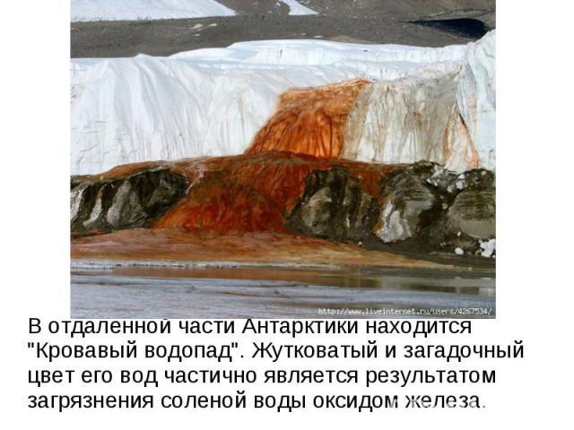 В отдаленной части Антарктики находится