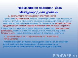 Нормативная правовая база Международный уровень 2. ДЕКЛАРАЦИЯ ПРИНЦИПОВ ТОЛЕРАНТ