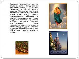 Согласно старинной легенде, ель стала символом Рождества по желанию небесных сил