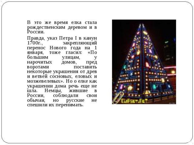 В это же время елка стала рождественским деревом и в России. Правда, указ Петра I в канун 1700г., закрепляющий перенос Нового года на 1 января, тоже гласил: «По большим улицам, у нарочитых домов, пред воротами поставить некоторые украшения от древ и…