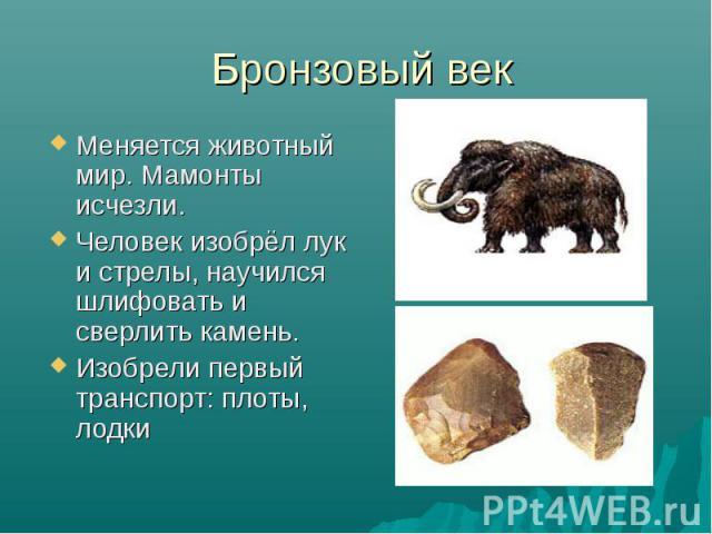 Бронзовый век Меняется животный мир. Мамонты исчезли. Человек изобрёл лук и стрелы, научился шлифовать и сверлить камень. Изобрели первый транспорт: плоты, лодки