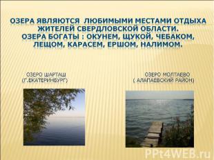 озера являются любимыми местами отдыха жителей свердловской области. Озера богат