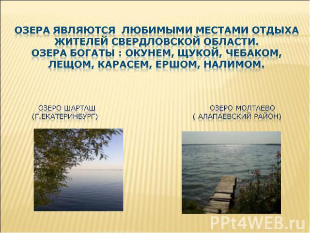 озера являются любимыми местами отдыха жителей свердловской области. Озера богаты : окунем, щукой, чебаком, лещом, карасем, ершом, налимом. Озеро шарташ озеро молтаево (г.екатеринбург) ( алапаевский район) о
