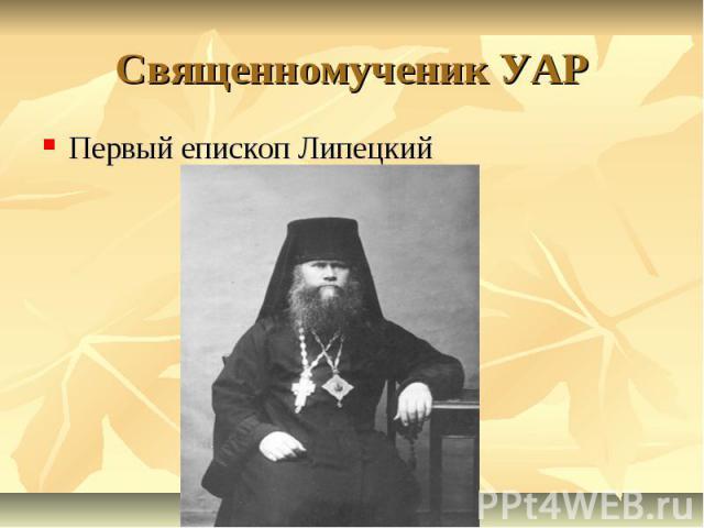 Священномученик УАР Первый епископ Липецкий