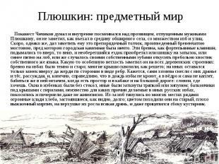 Плюшкин: предметный мир Покамест Чичиков думал и внутренне посмеивался над прозв