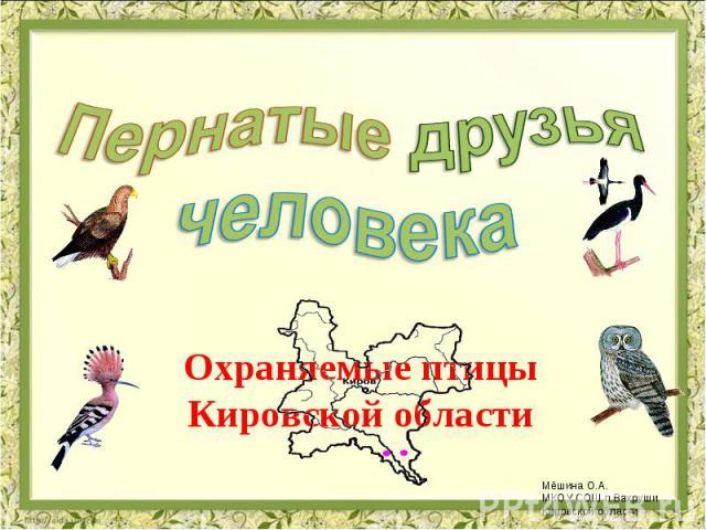Пернатые друзья человека Охраняемые птицы Кировской области
