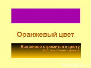 Оранжевый цвет Все живое стремится к цвету И.-В. Гете «Учение о цветах»