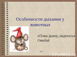 Особенности дыхания у животных «Пока дышу, надеюсь» Овидий