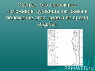 Осанка - это привычное положение туловища человека в положение стоя, сидя и во в