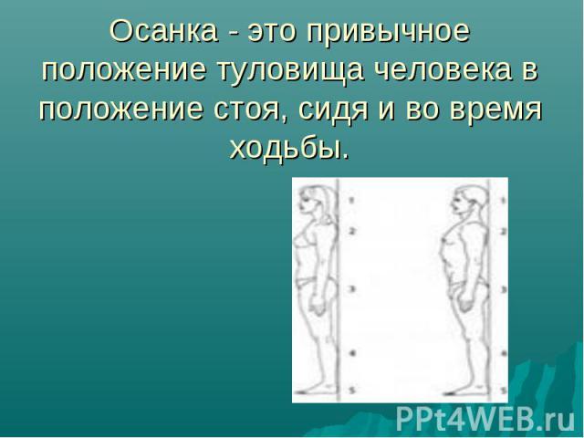 Осанка - это привычное положение туловища человека в положение стоя, сидя и во время ходьбы.