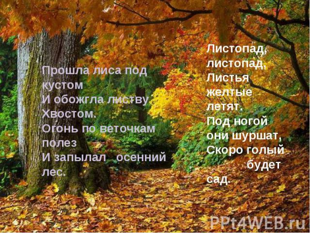 Прошла лиса под кустом И обожгла листву Хвостом. Огонь по веточкам полез И запылал осенний лес. Листопад, листопад, Листья желтые летят. Под ногой они шуршат, Скоро голый будет сад.