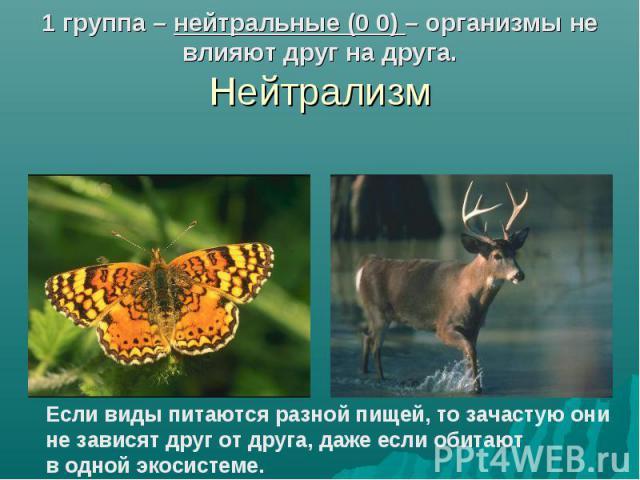1 группа – нейтральные (0 0) – организмы не влияют друг на друга. Нейтрализм Если виды питаются разной пищей, то зачастую они не зависят друг от друга, даже если обитают в одной экосистеме.