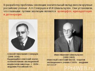 В разработку проблемы эволюции значительный вклад внесли крупные российские учен
