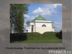 Усыпальница Тучковых на Бородинском поле.