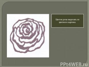 Цветок розы вырезать из цветного картона.