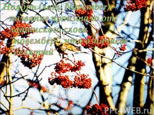 """Ноябрь (лат. November) – название произошло от латинского слова """"новембер"""", что"""