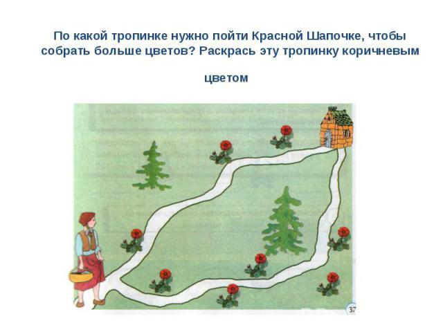 По какой тропинке нужно пойти Красной Шапочке, чтобы собрать больше цветов? Раскрась эту тропинку коричневым цветом