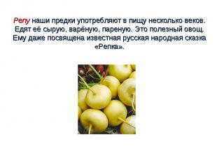 Репу наши предки употребляют в пищу несколько веков. Едят её сырую, варёную, пар