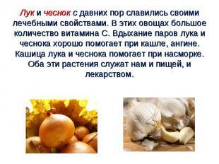 Лук и чеснок с давних пор славились своими лечебными свойствами. В этих овощах б