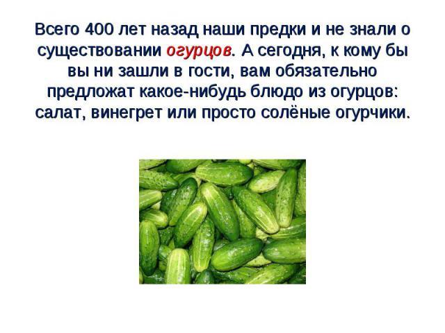 Всего 400 лет назад наши предки и не знали о существовании огурцов. А сегодня, к кому бы вы ни зашли в гости, вам обязательно предложат какое-нибудь блюдо из огурцов: салат, винегрет или просто солёные огурчики.