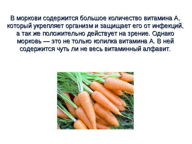 В моркови содержится большое количество витамина А, который укрепляет организм и защищает его от инфекций, а так же положительно действует на зрение. Однако морковь — это не только копилка витамина А. В ней содержится чуть ли не весь витаминный алфавит.
