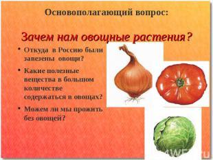Основополагающий вопрос: Зачем нам овощные растения? Откуда в Россию были завезе