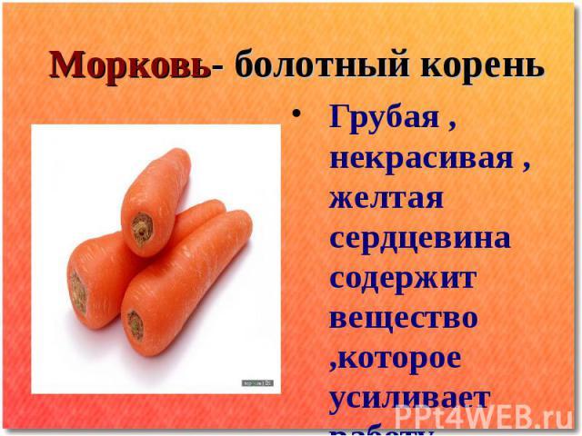 Морковь- болотный корень Грубая , некрасивая , желтая сердцевина содержит вещество ,которое усиливает работу сердечной мышцы Содержит КАРОТИН который превращается в Витамин А ВИТАМИН А: Улучшает зрение Замедляет процесс старения Необходим для роста …