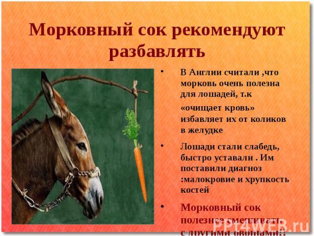 Морковный сок рекомендуют разбавлятьВ Англии считали ,что морковь очень полезна для лошадей, т.к «очищает кровь» избавляет их от коликов в желудке Лошади стали слабедь, быстро уставали . Им поставили диагноз :малокровие и хрупкость костей Морковный …