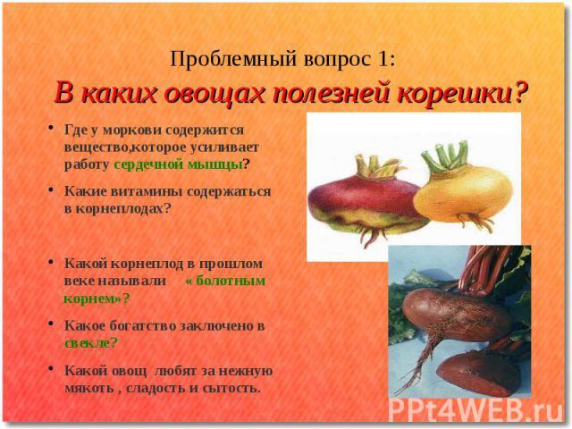 Проблемный вопрос 1: В каких овощах полезней корешки? Где у моркови содержится вещество,которое усиливает работу сердечной мышцы? Какие витамины содержаться в корнеплодах? Какой корнеплод в прошлом веке называли « болотным корнем»? Какое богатство з…